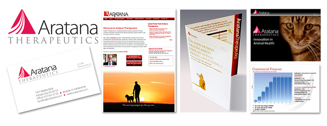 aratana_featured_projectx370